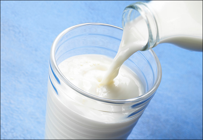 Why some people have Milk/Lactose-Intolerance
