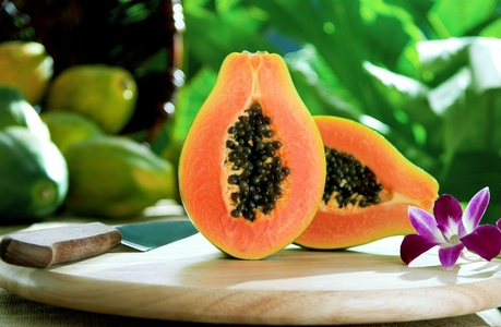 Antifertility & Contraception Fruit – Papaya