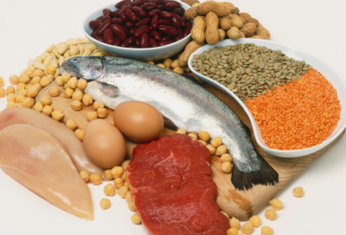 Are Diets High in Protein Fat's Enemy?